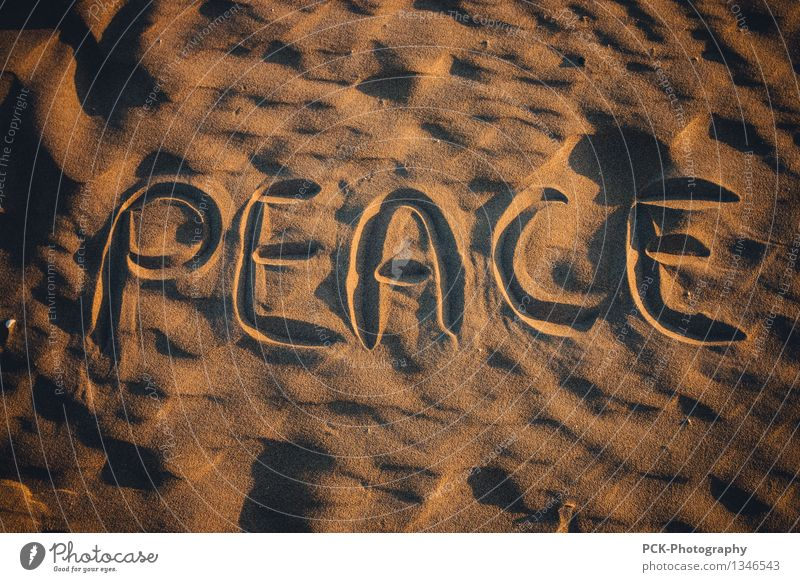 Friede Natur schön Sommer Freude gelb Herbst Frühling Glück braun Sand gold Zeichen Hilfsbereitschaft Freundlichkeit Hoffnung Glaube