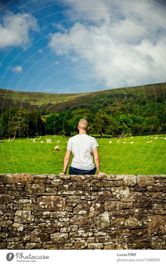 1, 2, 3, 4, 5, 6, zzZZZZzzzZzZZZzzzzz Mensch Himmel Ferien & Urlaub & Reisen Jugendliche Mann blau grün Erholung Junger Mann ruhig Ferne 18-30 Jahre Erwachsene Wand Wiese Gras