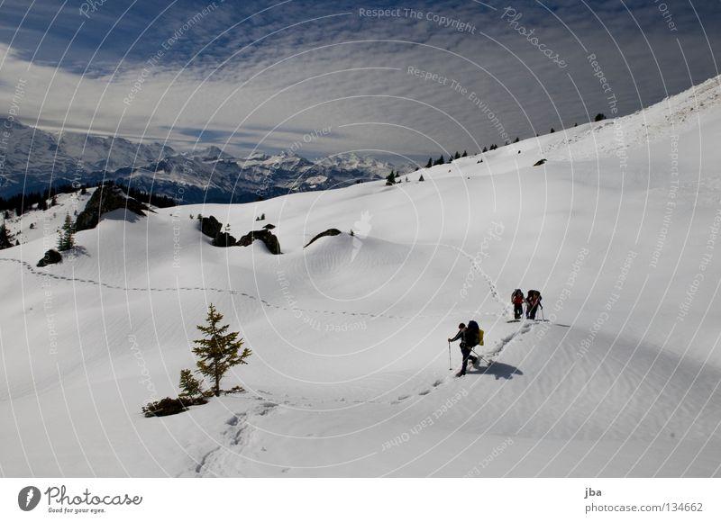 Spuren im Schnee III Natur Ferien & Urlaub & Reisen Schnee Berge u. Gebirge wandern mehrere Sportmannschaft Alpen Aussicht Tanne unterwegs Alm Wildnis Mönch (Berg) Jungfrau (Berg) Kanton Bern