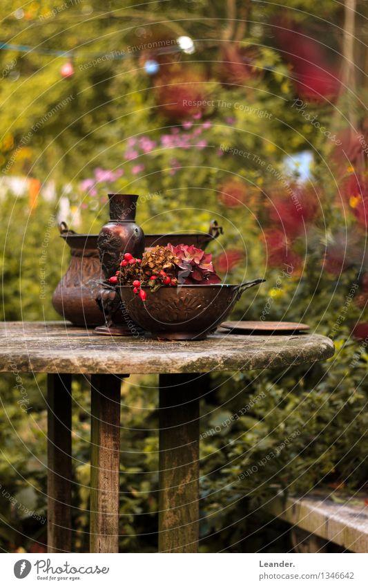 Stillleben vogelbeeren ein lizenzfreies stock foto von for Gartendeko tisch