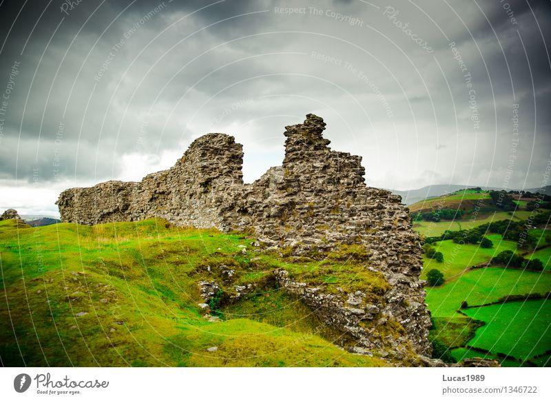 Reste Umwelt Natur Landschaft Wolken Gewitterwolken Klima schlechtes Wetter Sturm Regen Baum Gras Sträucher Moos Wiese Wald Hügel Felsen Berge u. Gebirge Wales