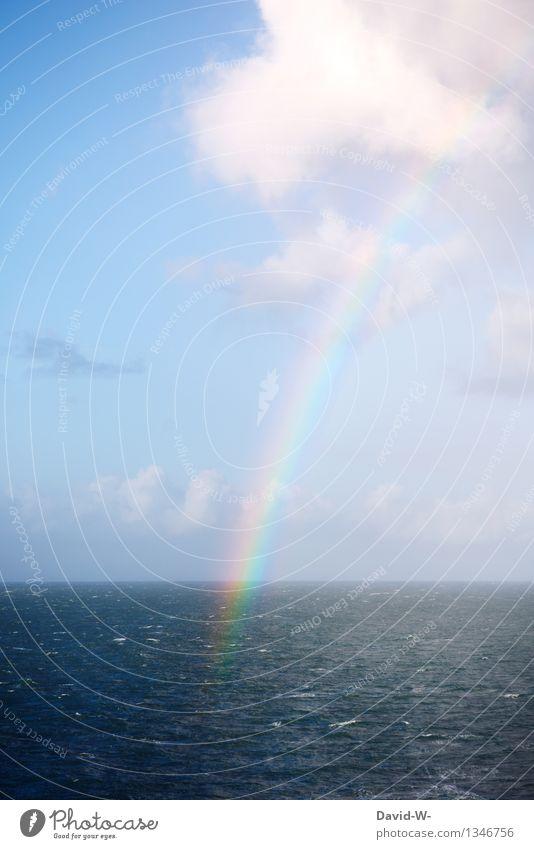 Resultat aus Sonne und Regen Umwelt Natur Urelemente Luft Himmel Wolken Sonnenlicht Sommer Herbst Klima Wetter Schönes Wetter außergewöhnlich elegant maritim