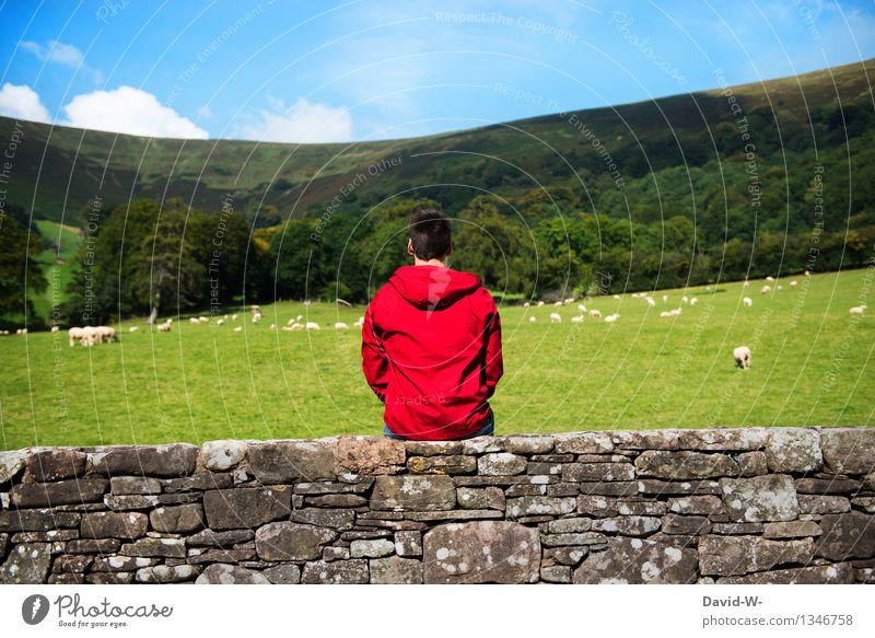 Kontrast Wohlgefühl Zufriedenheit Erholung ruhig Ferien & Urlaub & Reisen Tourismus Ausflug Freiheit Sommerurlaub wandern Mensch maskulin Junger Mann