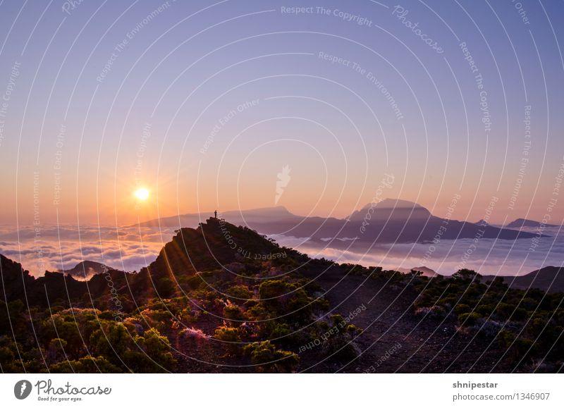 Sunset at Piton de La Fournaise Mensch Himmel Natur Ferien & Urlaub & Reisen Pflanze Sommer Erholung Landschaft Wolken Ferne Berge u. Gebirge Felsen Tourismus