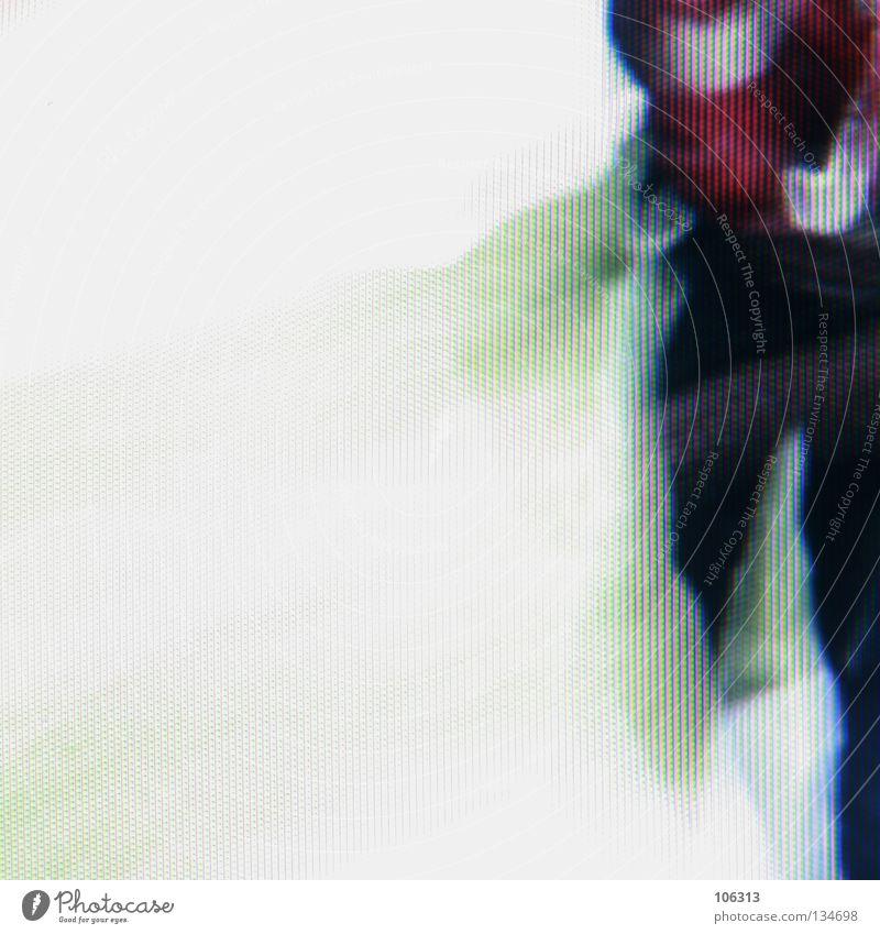 [PRGB.01] 2002 Mensch weiß rot Winter kalt Schnee Wand Wärme Bewegung Stil Beine Kraft elegant laufen Aktion Bild