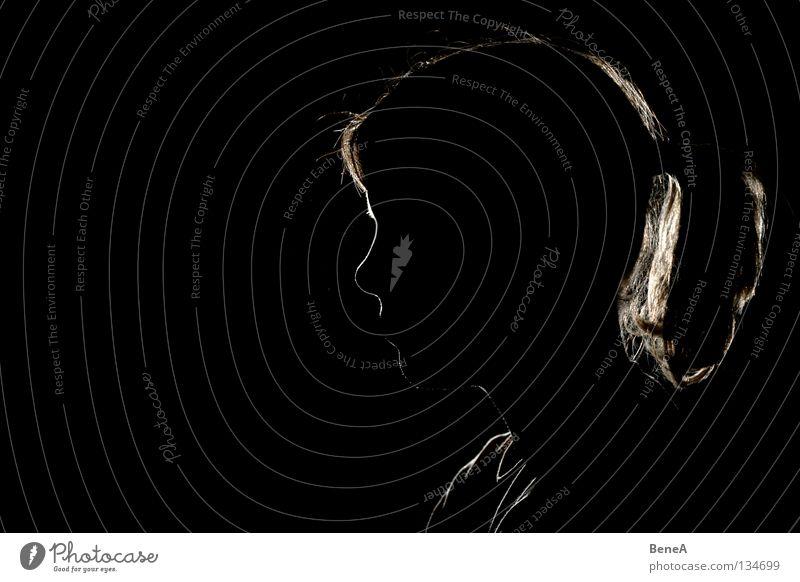 Dem Anschein nach Mädchen Frau Licht dunkel schwarz weiß Gegenlicht Beleuchtung Kranz Silhouette Haare & Frisuren Zopf Profil Seite schön Dame hell Schatten