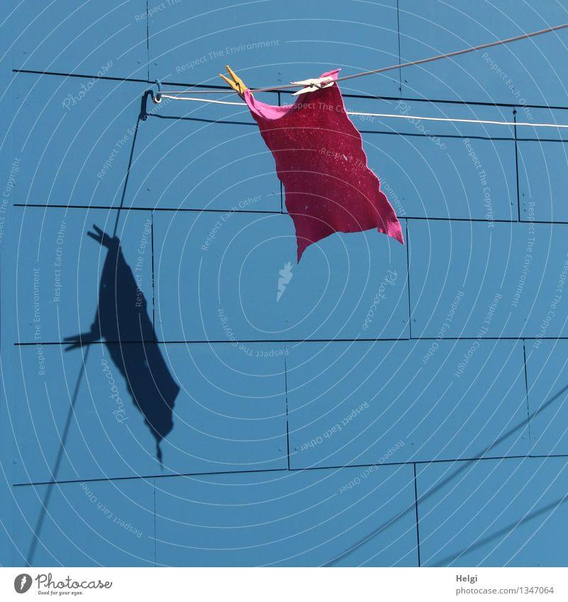 geputzt... Mauer Wand Putztuch Wäscheklammern Wäscheleine Haken Linie festhalten hängen authentisch einfach frisch einzigartig nass Sauberkeit blau grau rosa
