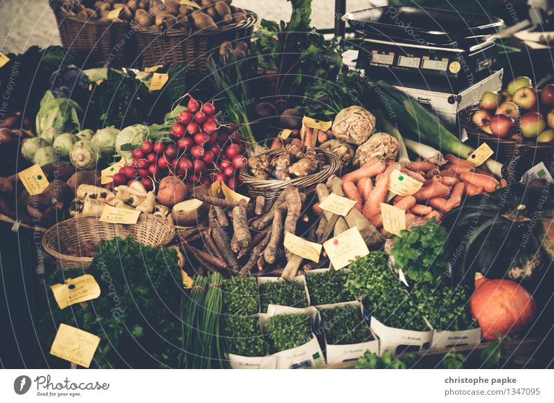 Markttag Lebensmittel Gemüse Salat Salatbeilage Kräuter & Gewürze Ernährung Bioprodukte Vegetarische Ernährung kaufen Gesundheit Erntedankfest Landwirtschaft