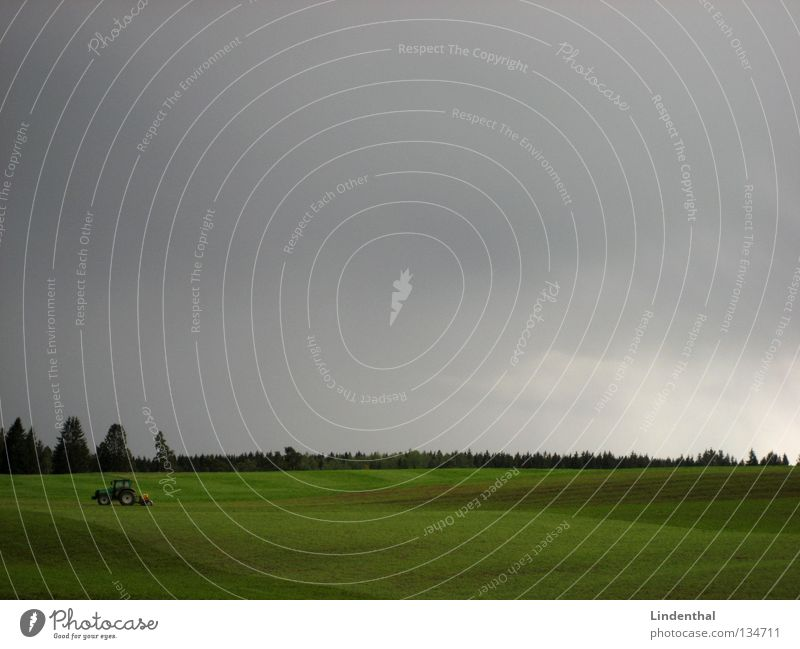 IMG_6300.JPG Himmel Wald Arbeit & Erwerbstätigkeit Wiese grau Feld Landwirtschaft Landwirt Amerika Weide Traktor Walze