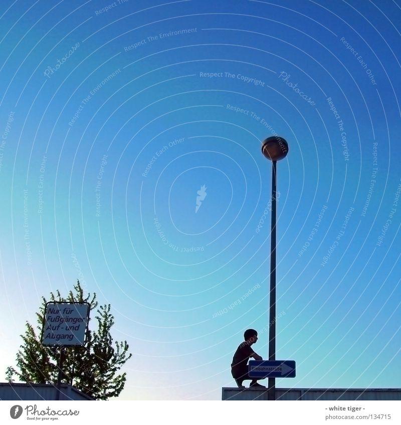 Fußgänger Auf- und Abgang Mensch Himmel blau weiß grün Baum Stil Zufriedenheit Schilder & Markierungen Treppe Pfeil Laterne Barriere Fußgänger Blauer Himmel hocken