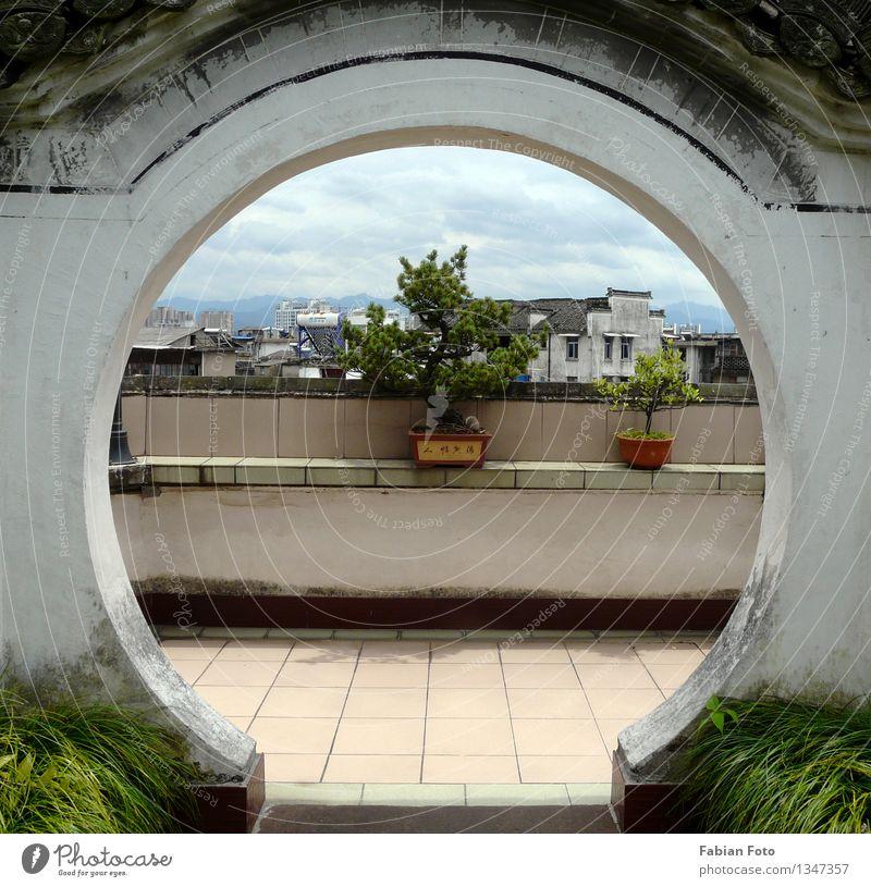 China- Außenansichten Tier Pflanze Baum Bonsai Garten Tunxi Asien Dorf Kleinstadt Tempel Balkon Tür Loch Häusliches Leben alt ästhetisch Farbfoto mehrfarbig