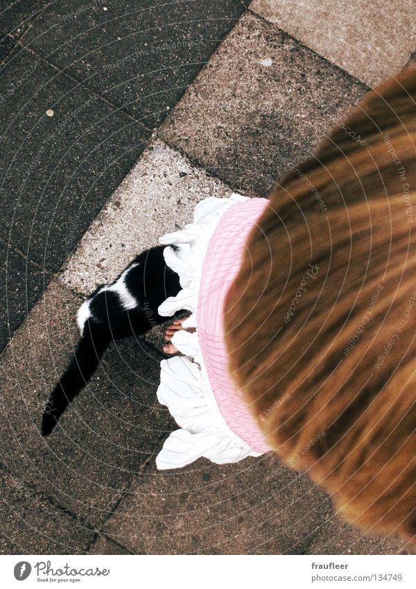 typisch mann Frau Mädchen Sommer Freude Spielen Freiheit Kopf Stein Fuß Katze Geschwindigkeit Trauer süß Bodenbelag Neugier Barfuß
