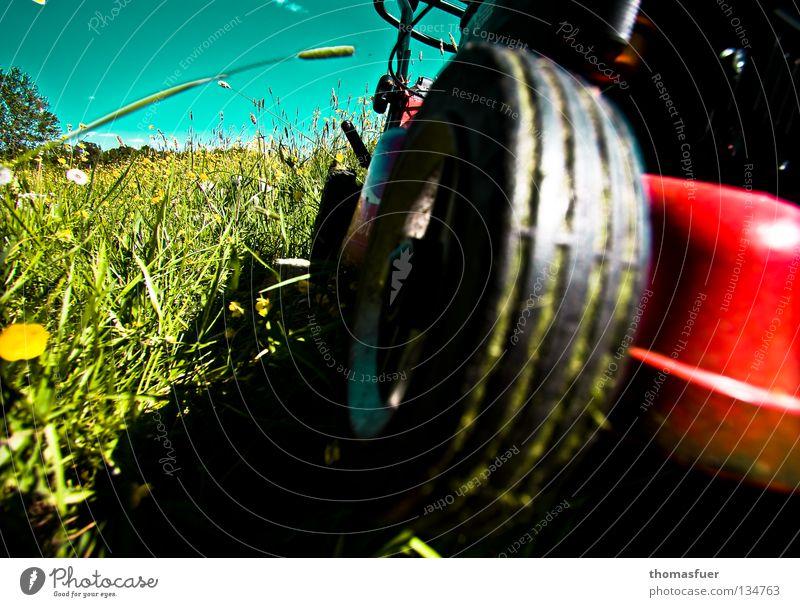 Formel-1 Sommer Wiese Rasenmäher Krach rasenmähen Gras kurz laut Ordnung Sauberkeit ruhig Liegestuhl Schrebergarten Vorgarten Freizeit & Hobby Sommerfest