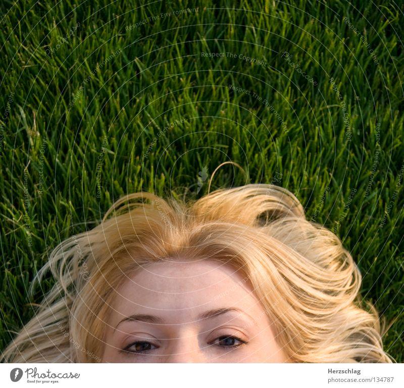 ich kann dich sehen grün Sommer Auge Wiese Gras Haare & Frisuren Vogel Haut blond Perspektive beobachten