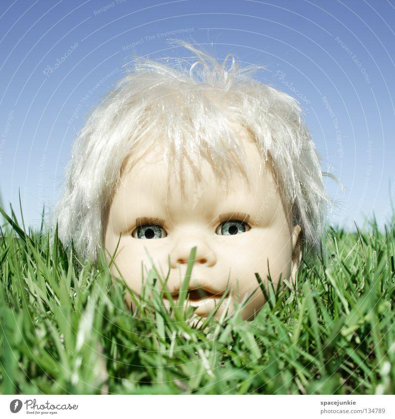 In the grass Gras Wiese grün Spielzeug bedrohlich beängstigend blond Chucky gruselig Horrorfilm böse süß niedlich skurril kopflos Freude Natur Himmel blau Puppe