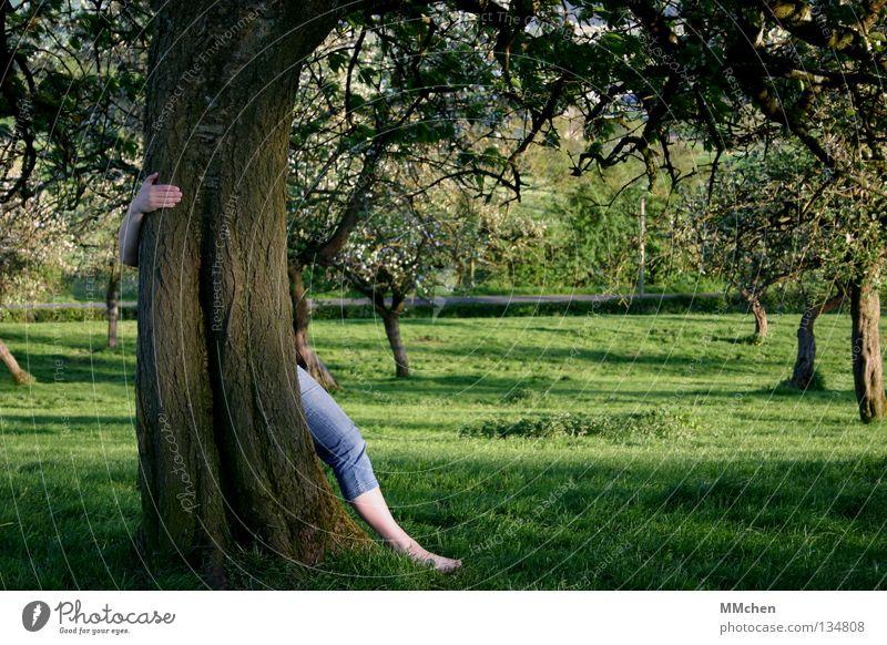 Zeig Dich! Mensch Natur alt Baum Hand Blatt Blüte Gefühle Frühling Wiese Gras Spielen Garten Wachstum frisch Kraft