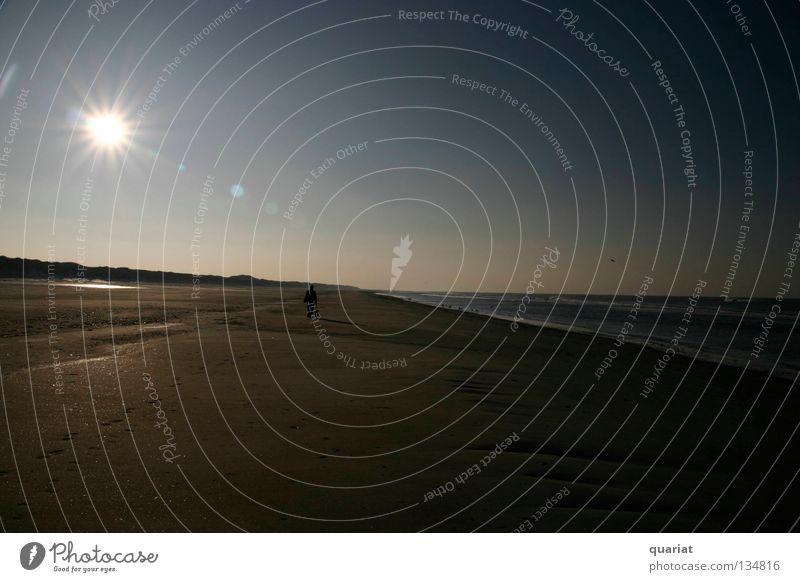 Einsamer Mann Sonne Strand Einsamkeit Freiheit Hund Küste Dänemark