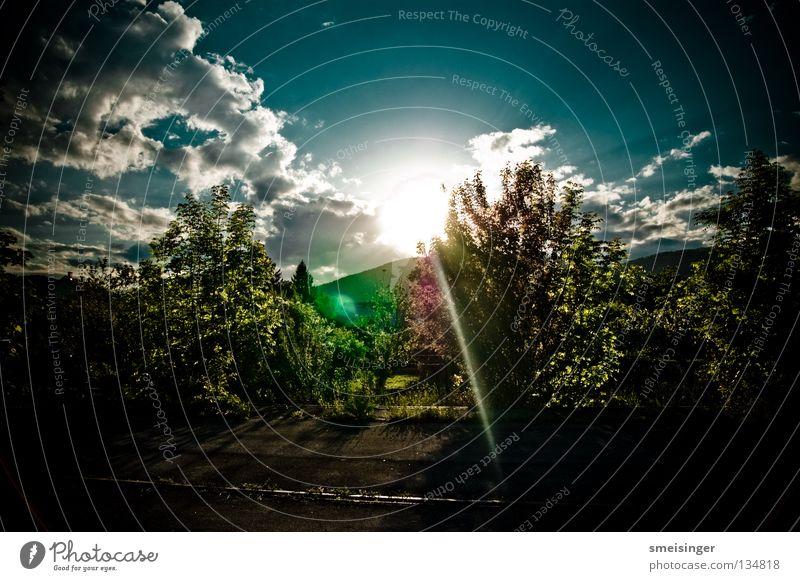Bäume, Sträucher, Wolken, Himmel ... Natur Himmel Baum Sonne grün blau Pflanze Sommer Wolken Farbe Wärme hell Umwelt Sträucher Idylle Hügel