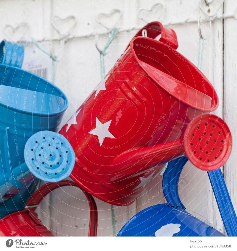 Gießkannen Dekoration & Verzierung Sammlung Holz Metall hängen authentisch glänzend retro trashig blau rot weiß Frühlingsgefühle Begeisterung Kreativität Kultur