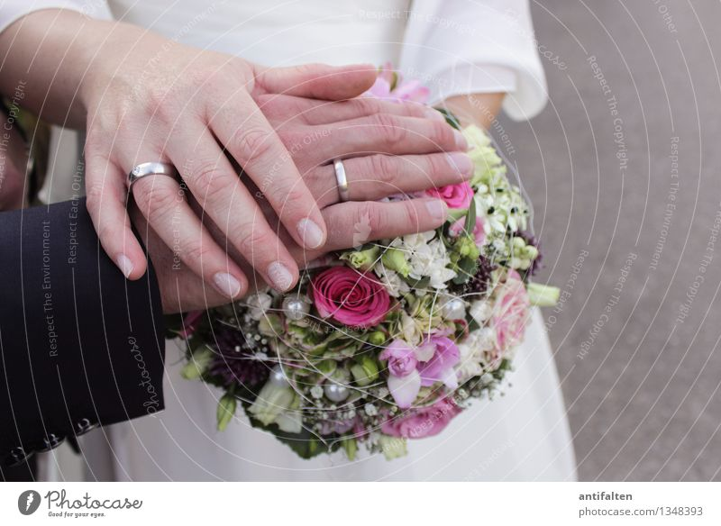 Bund fürs Leben Mensch Frau Erwachsene Mann Paar Partner Körper Arme Hand Finger Ringfinger 2 30-45 Jahre Blume Blumenstrauß Anzug Brautkleid Schmuck Ehering