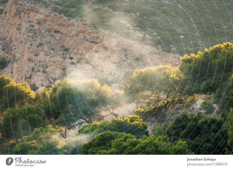 Sommerrauch Umwelt Natur Landschaft Sonnenlicht Schönes Wetter Pflanze Baum Gras Park Wald Hügel Felsen Berge u. Gebirge ästhetisch Abendsonne Abenddämmerung