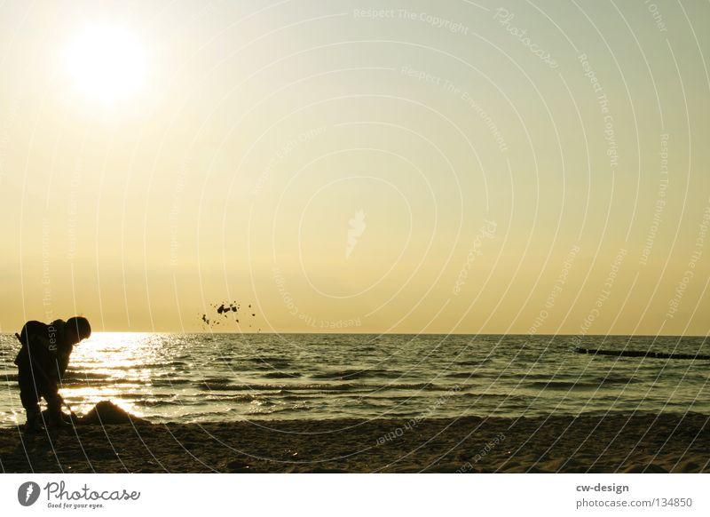 ICH BAU DIR EIN HAUS AUS SCHWEINSKOPFSÜLZE Mensch Kind Wasser Ferien & Urlaub & Reisen Sommer Sonne Meer Freude Mädchen Strand schwarz Erholung Herbst Spielen