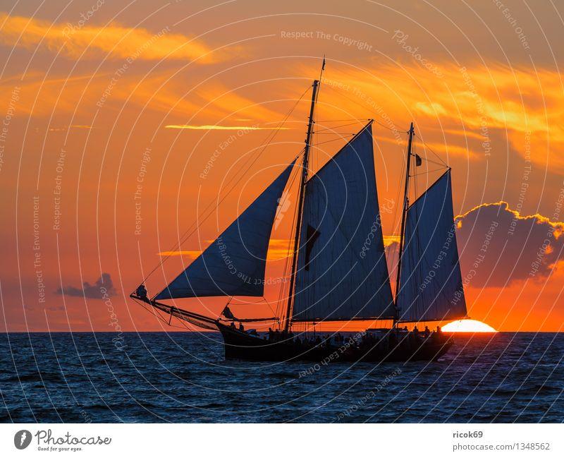 Hanse Sail Natur Ferien & Urlaub & Reisen blau Wasser Meer Wolken Küste Wasserfahrzeug Tourismus Idylle Wellen Romantik Güterverkehr & Logistik Ostsee Tradition