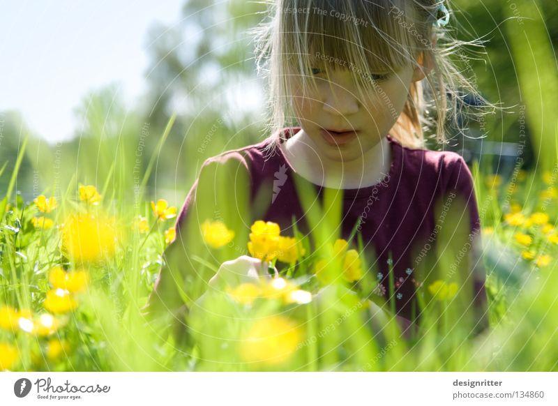 Abgetaucht Kind Natur Pflanze Sonne Sommer Mädchen Blume Tier Wiese Wärme Gras Frühling Blüte träumen Gesundheit Suche