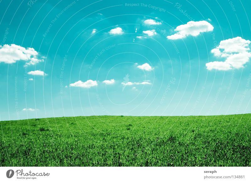 Leichtigkeit Himmel Natur Ferien & Urlaub & Reisen grün Sommer Sonne Erholung Landschaft Wolken Ferne Umwelt Wiese Gras natürlich Freiheit Hintergrundbild