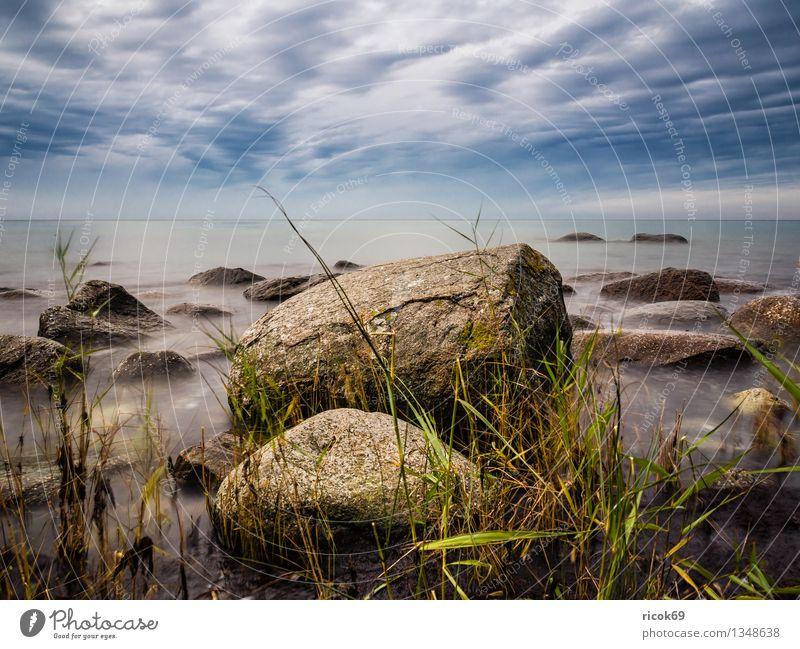 Ostseeküste Ferien & Urlaub & Reisen Natur Landschaft Felsen Küste Meer Stein blau Romantik Idylle ruhig Steinblock Himmel Rügen Lohme Mecklenburg-Vorpommern