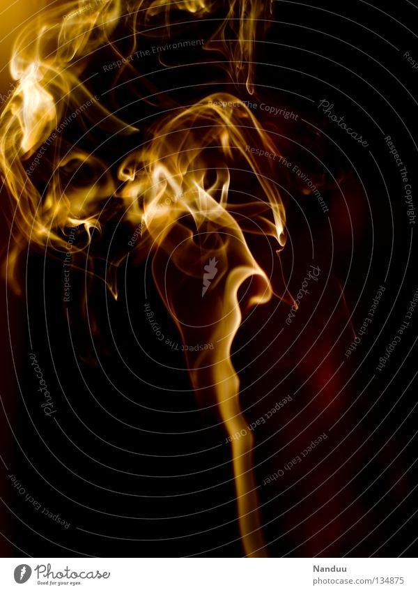 Taumel rot gelb dunkel Wärme Hintergrundbild orange Wind gefährlich bedrohlich Brand Vergänglichkeit Idee Romantik heiß Physik zart