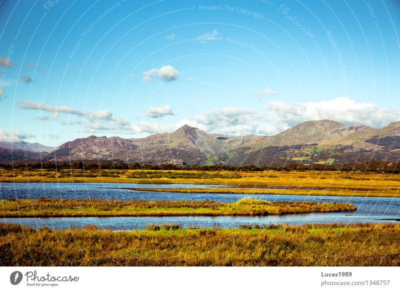 Natur pur Ferien & Urlaub & Reisen Abenteuer Umwelt Landschaft Pflanze Erde Sand Luft Wasser Himmel Wolken Sonne Klima Wetter Schönes Wetter Gras Sträucher Moos