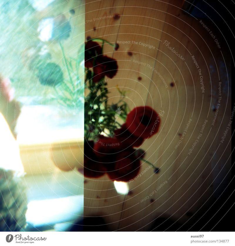 leica97aussigirl Blumenstrauß Doppelbelichtung Mittelformat