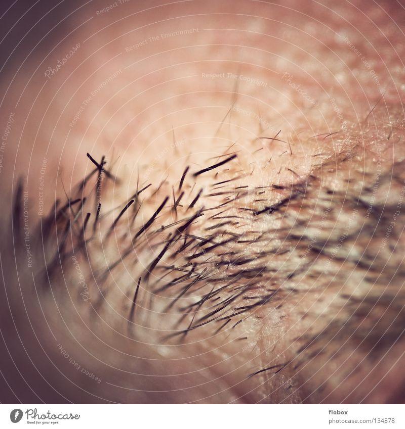 Body Parts II Mensch Mann schön Auge maskulin Streifen Schutz hässlich Augenbraue Stirn Körperteile