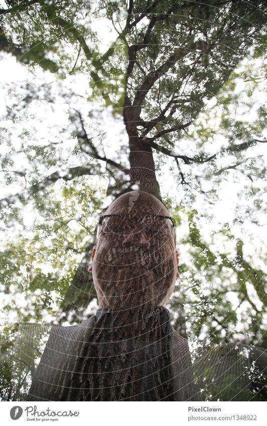 Waldschrat Freude Ferien & Urlaub & Reisen maskulin Körper 1 Mensch 45-60 Jahre Erwachsene Kunst Natur Himmel Pflanze Baum Bart Blühend Lächeln trendy verrückt