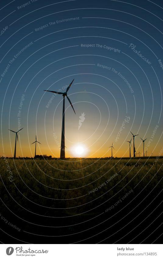 Mühlendämmerung Sonnenuntergang Raps Rapsfeld Dämmerung Windstille dunkel gelb stagnierend Sommer Umwelt Freizeit & Hobby Elektrisches Gerät