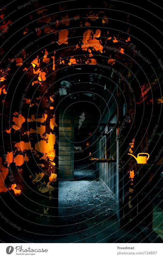 es gibt sie doch Schichtarbeit Langzeitbelichtung Schweiz Kannen Verfall Dinge Gießkanne Mauer Vernetzung dunkel Taschenlampe Dauerlicht Reihe braun Putz Beton