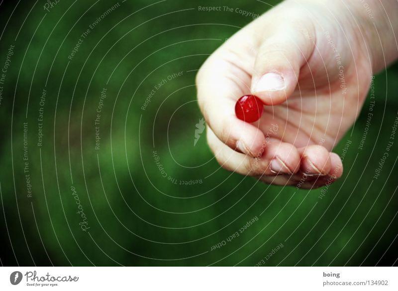 Johannisbeere Murmel Hand Wiese Erntehelfer rot süß Frucht Johannisbeeren Beeren Beerenobst Kugel schnippen Garten Markt Ernteeinsatz Wut Essen