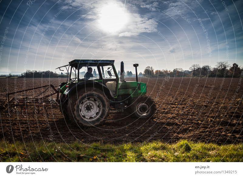 bestellen Gesundheitswesen Gesunde Ernährung Allergie Beruf Landwirtschaft Forstwirtschaft Erneuerbare Energie 1 Mensch Natur Landschaft Erde Himmel Horizont