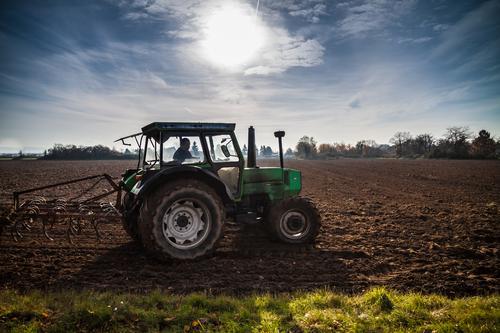 bestellen Mensch Himmel Natur blau grün Sonne Gesunde Ernährung Landschaft Frühling Herbst Wiese Gesundheitswesen braun Horizont Arbeit & Erwerbstätigkeit Feld