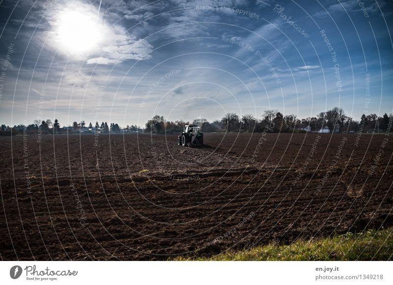 hin und her Himmel blau Sonne Gesunde Ernährung Landschaft Frühling Herbst Gesundheitswesen braun Arbeit & Erwerbstätigkeit Feld Wachstum Erde Energie Klima