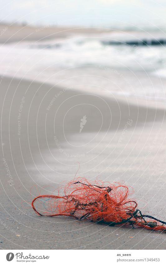 Strandgut Natur Farbe Wasser Meer Einsamkeit Landschaft ruhig Strand Umwelt grau braun Sand liegen orange authentisch Wind