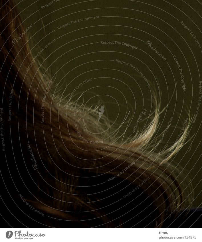 Verlockung Frau schön feminin Haare & Frisuren diagonal Locken Schulter elektrisch luftig spreizen verweht