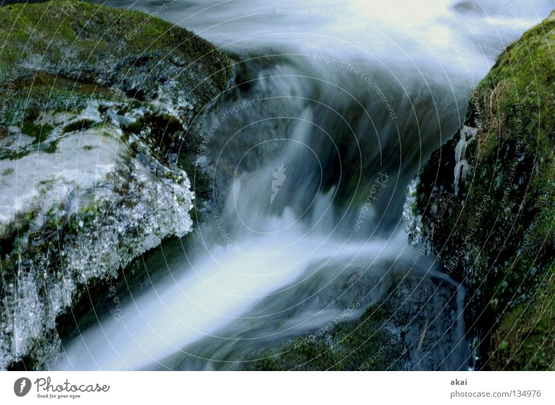 Softeis Natur Wasser kalt Stein Landschaft Eis Fluss weich natürlich gefroren Moos Bach abwärts Wasserfall krumm Schwarzwald