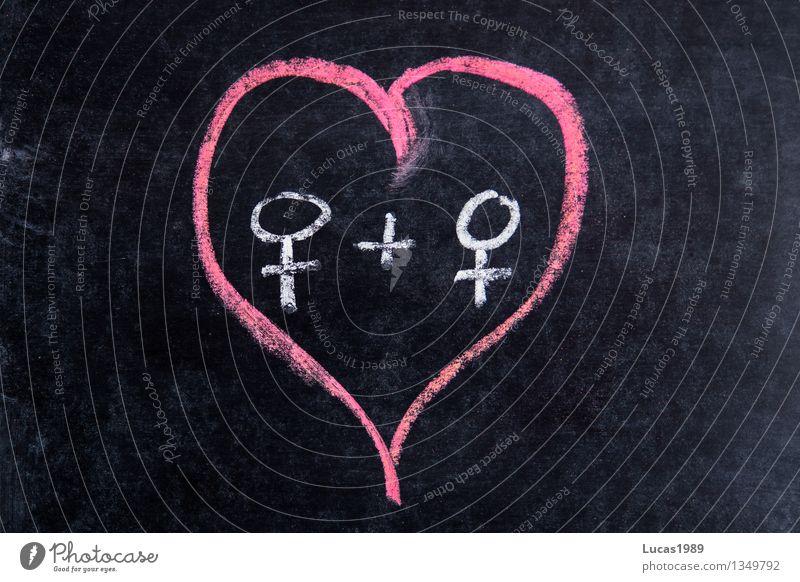 Herz mit 2 Weiblichkeitssymbolen Homosexualität Tafel Kreide Mensch feminin Junge Frau Jugendliche Erwachsene Paar Partner rosa schwarz weiß Gefühle