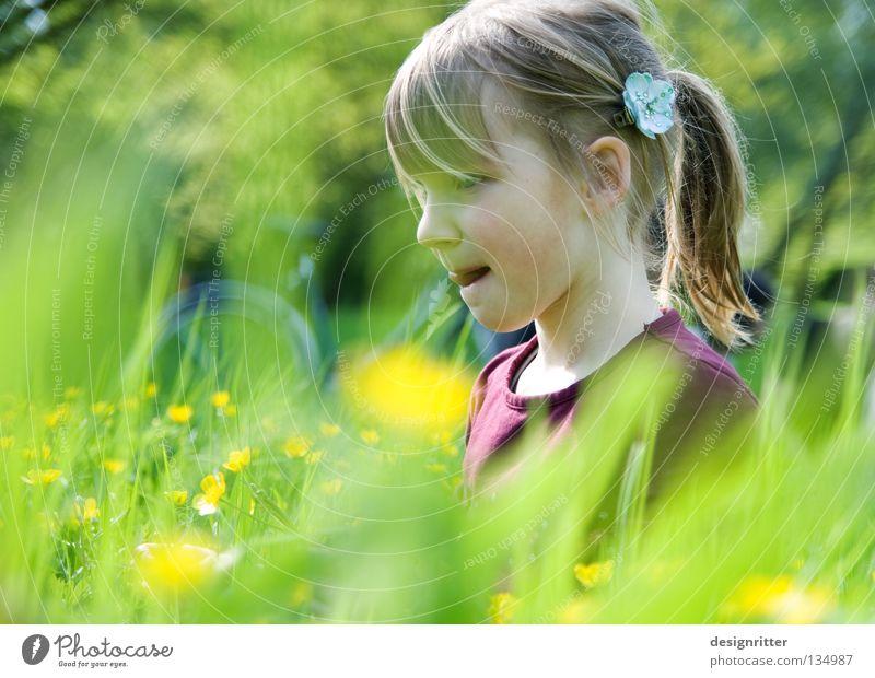 Lecker Butterblumen! Kind Natur Pflanze Sommer Mädchen Blume Tier Wiese Wärme Gras Frühling Blüte träumen Gesundheit Suche Physik