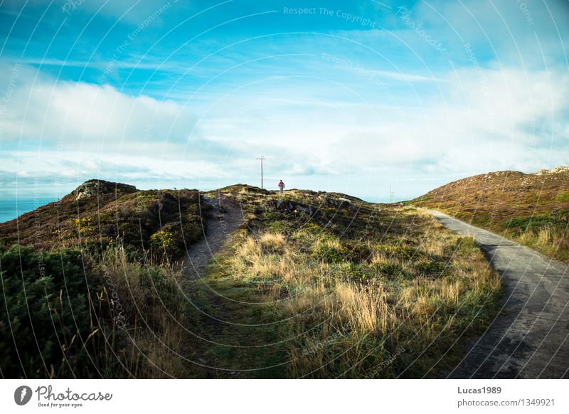 der leichte oder der schwere Weg Mensch Himmel Natur Ferien & Urlaub & Reisen Mann Pflanze Sommer Sonne Landschaft Erwachsene Berge u. Gebirge Umwelt Wiese Gras