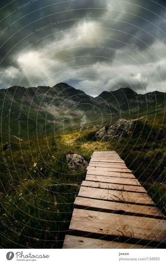 Hoffnung Berge u. Gebirge wandern Natur Landschaft Himmel Wolken schlechtes Wetter Unwetter Wind Gewitter Blume Gras Wiese Gipfel Wege & Pfade alt dunkel oben