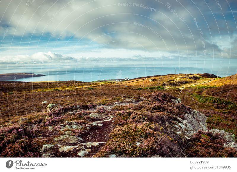 Landschaft Himmel Natur Ferien & Urlaub & Reisen blau grün Sommer Meer Wolken Ferne Strand Umwelt Wiese Gras Küste Freiheit