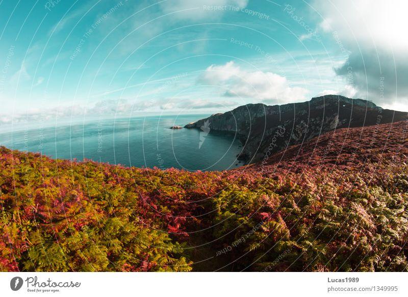 Bucht im Paradies Himmel Natur Ferien & Urlaub & Reisen Pflanze blau Sonne Baum Meer Landschaft Wolken Ferne Wald Berge u. Gebirge Umwelt Wiese Küste